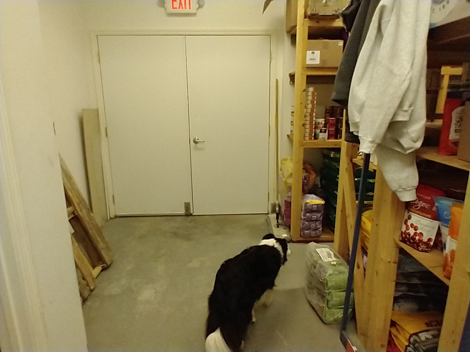 Commercial building storage room