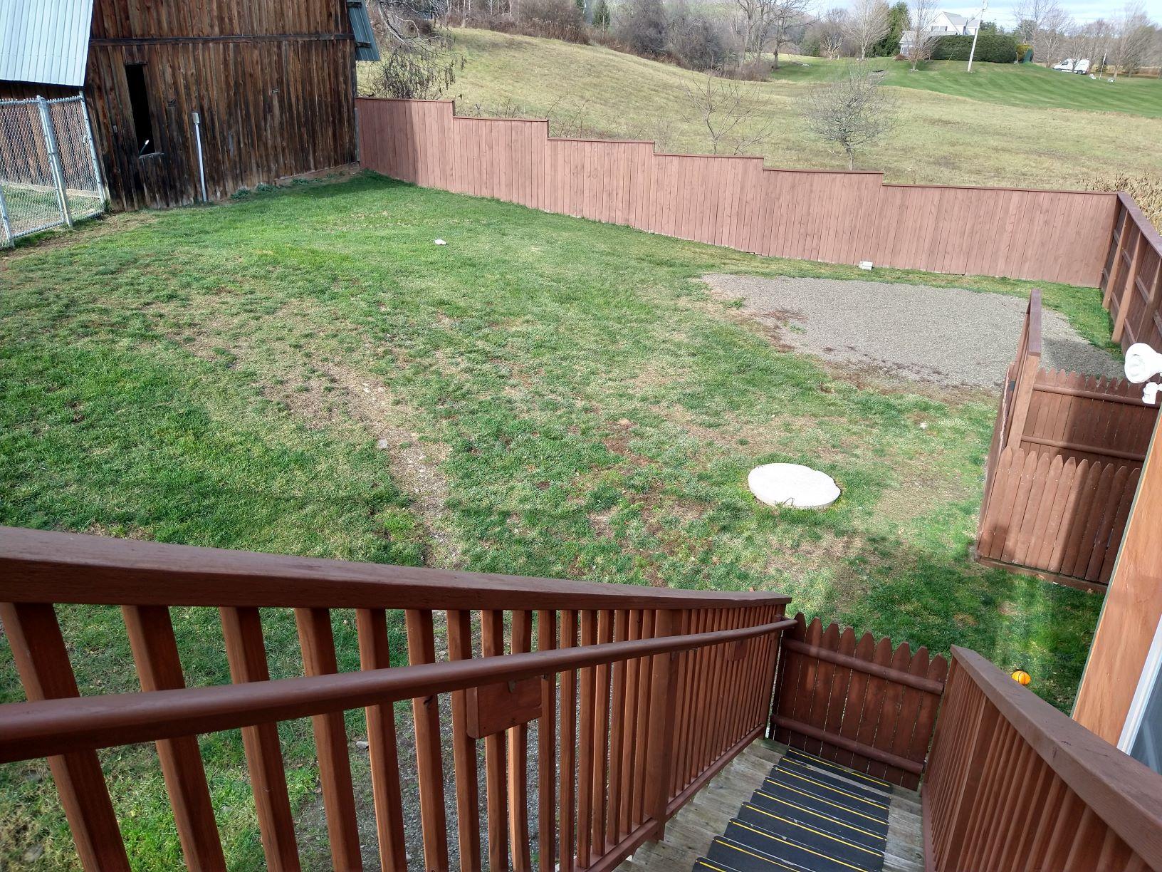 Yard behind the house
